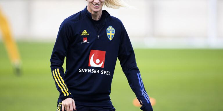 Svenska stjärnorna mörkar framtidsbesluten