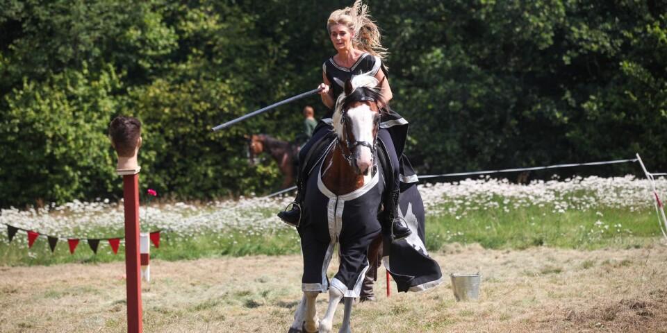 Riddaren Enhörning af Christinehof hade inga problem att pricka huvudet med lansen.