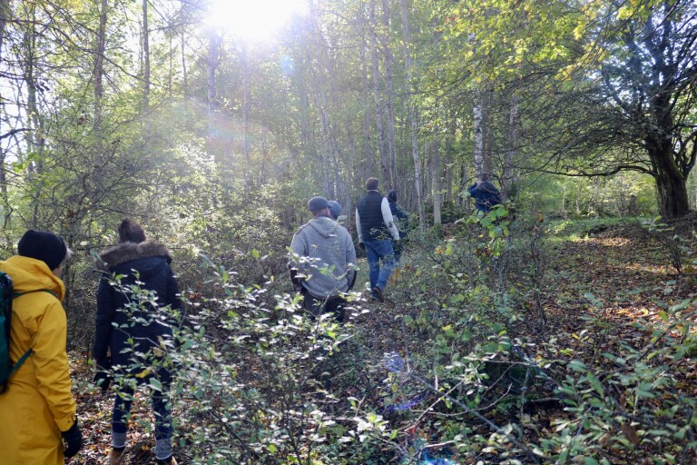 Skogsbadspremiär i Torsås - förhoppning om ny turistattraktion