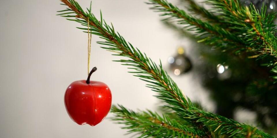 Det händer en hel del i Karlshamn fram till jul.