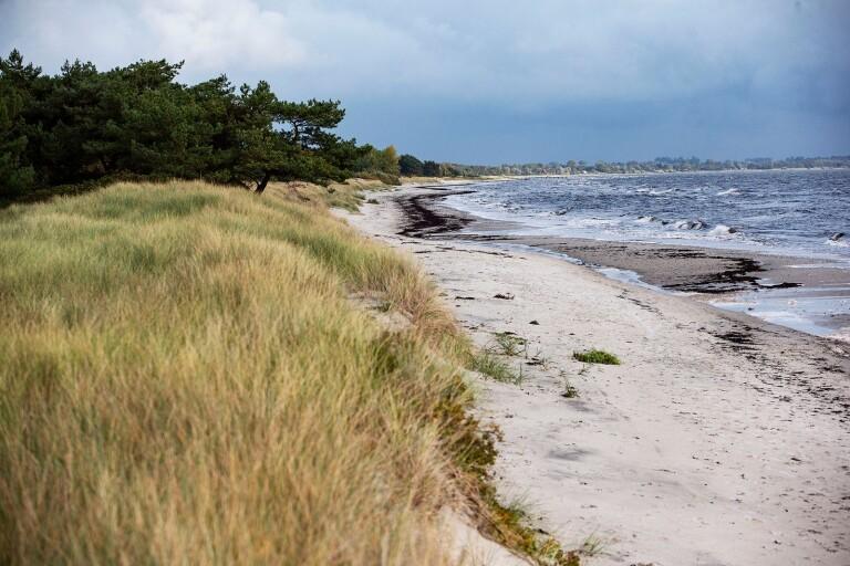 Vissa sanddyner kan räcka som skydd
