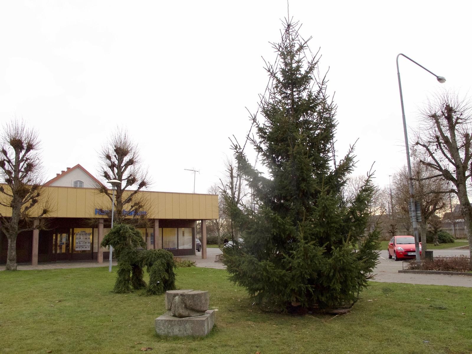 EMMABODA: Årets julgran på Centrumtorget i Emmaboda har tagits fram av Lions och har tidigare stått i Lindåstrakten. Granen har sedvanligt sällskap av julbocken.