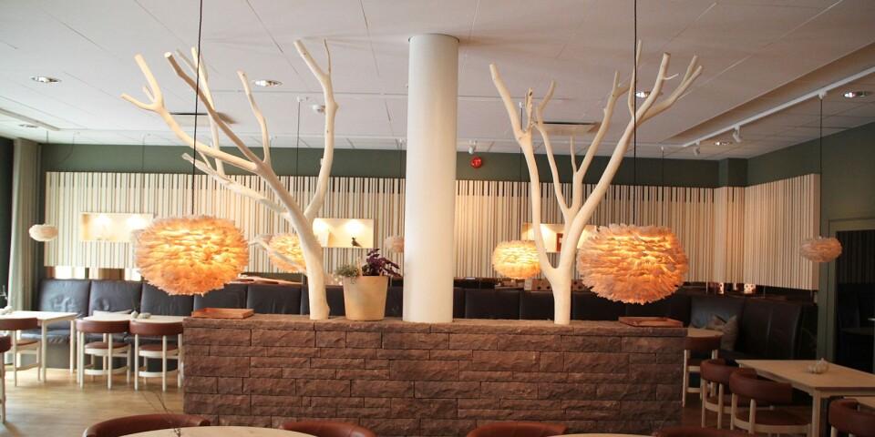 I matsalen möts gästen av en kalkstensmur med två askar som skjuter upp.