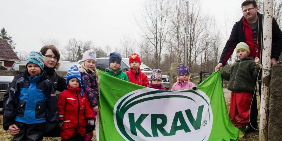 Ekologiska livsmedel är bra för klimatiet. På bilden: Trollskogens förskola i Skrävle firar kravmärkning.