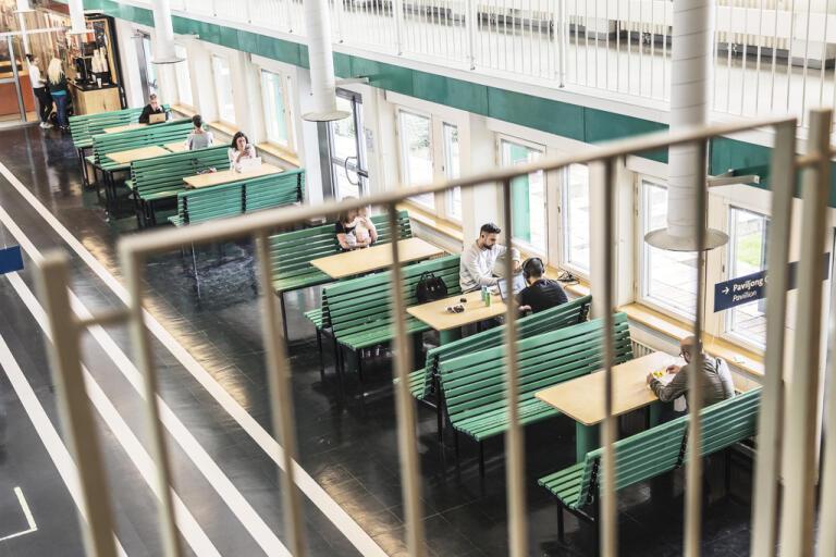 Flera tusen utländska studenter riskerar att inte få uppehållstillstånd i höst. Arkivbild.