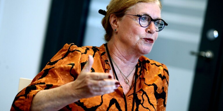 """Tidigare landshövding i blåsväder: """"Jag är inte korrupt"""""""