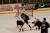 "Ishockey: Bekräftat coronafall i Nittorp – ""Testar alla"""