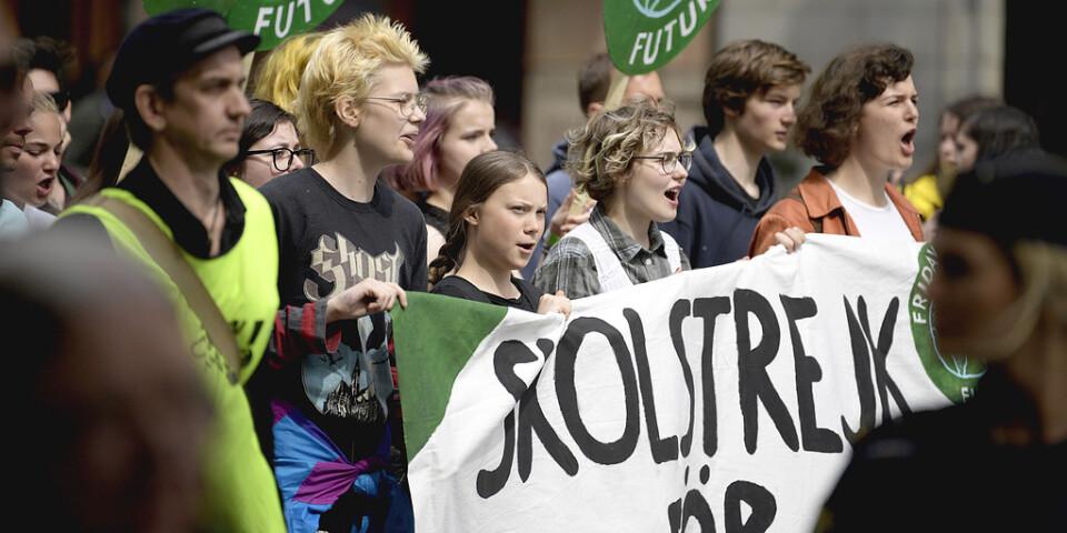 Greta Thunberg och demonstrationerna som följt efter hennes skolstrejk kan ha lett till gröna partiers framgång i valet.