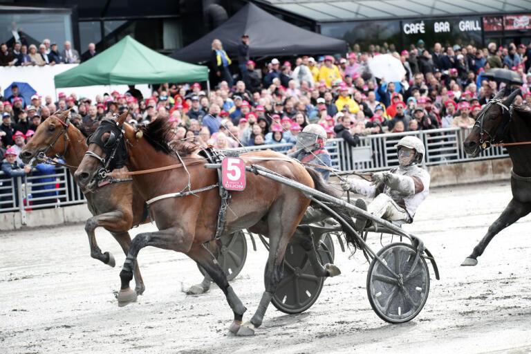 Den franska hästen Dijon, körd av kusken Romain Derieux, vann Elitloppet i fjol.