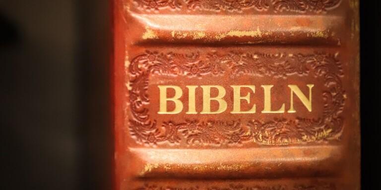 Bibelciterande man döms för upprepat våld och hot mot sin sambo