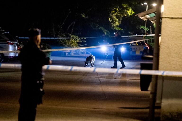 Borås: Stort polispådrag efter skottlossning – misstänkt mordförsök