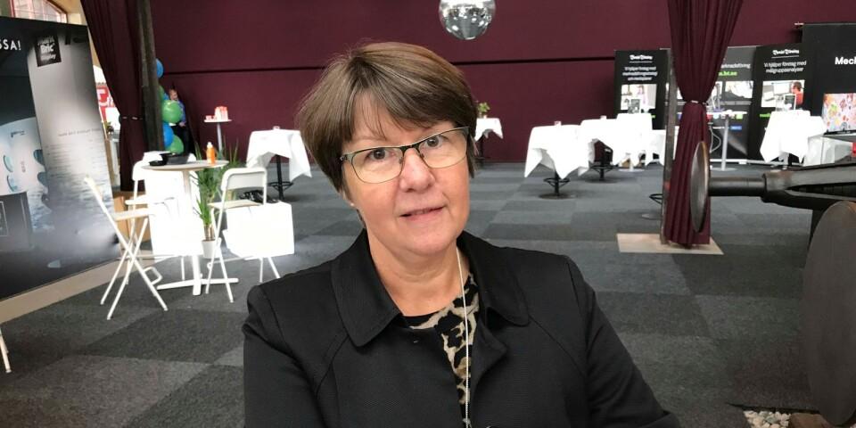 Kerstin Hermansson (C).