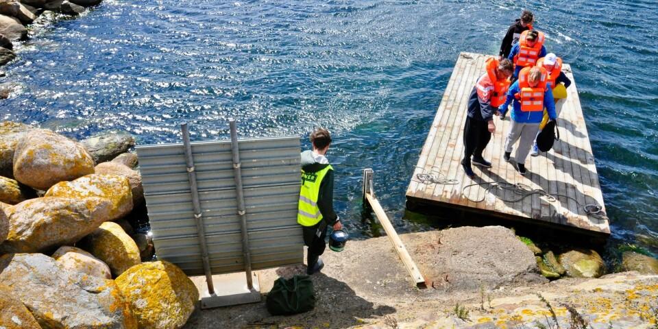 För att komma ut till vågbrytaren fick gruppen båda dagarna åka flotte genom hamnen med personal från Hamnkontoret bakom rodret.