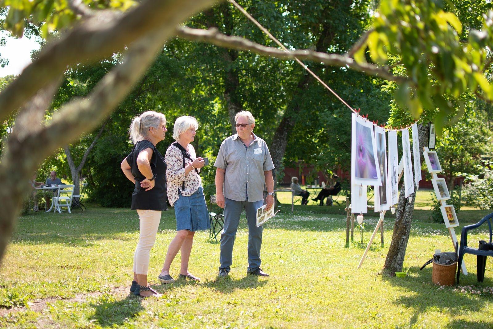 Kalmar Fotoklubb var premiärgäster på evenemanget Tavlor i träden. Här är det Veronica Forsberg, Ulla Geertsen Elm och Christer Granberg som diskuterar sitt gemensamma intresse. Evenemanget Tavlor i träden, arrangeras på Krusenstiernska varje söndag i sommar, till och med den 1 augusti.