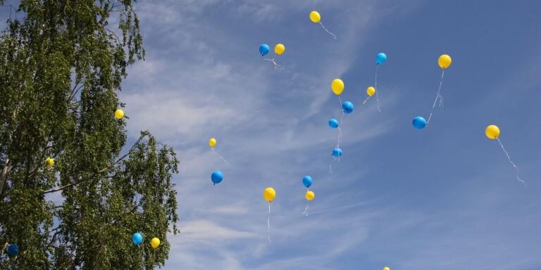 Digitalt firande i Kalmar på nationaldagen