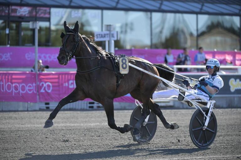 Propulsion, med kusken Örjan Kilström i sulkyn, vann Elitloppet i söndags. Nu är hästen anklagad för att vara nervsnittad.