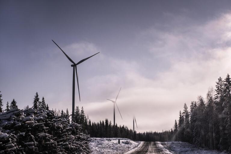 Regeringen vill införa gröna kreditgarantier för miljö- och klimatinvesteringar. Arkivbild