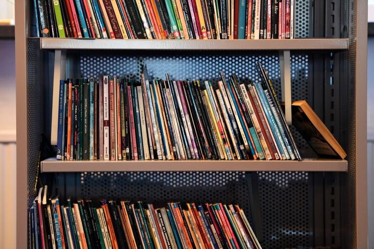 Skolbibliotekarierna hotas av sparkraven i M och KD:s budget