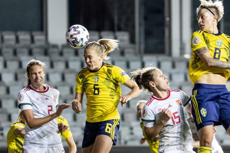 """Svenska vapnet: """"Jobbigt för dem varje gång"""""""