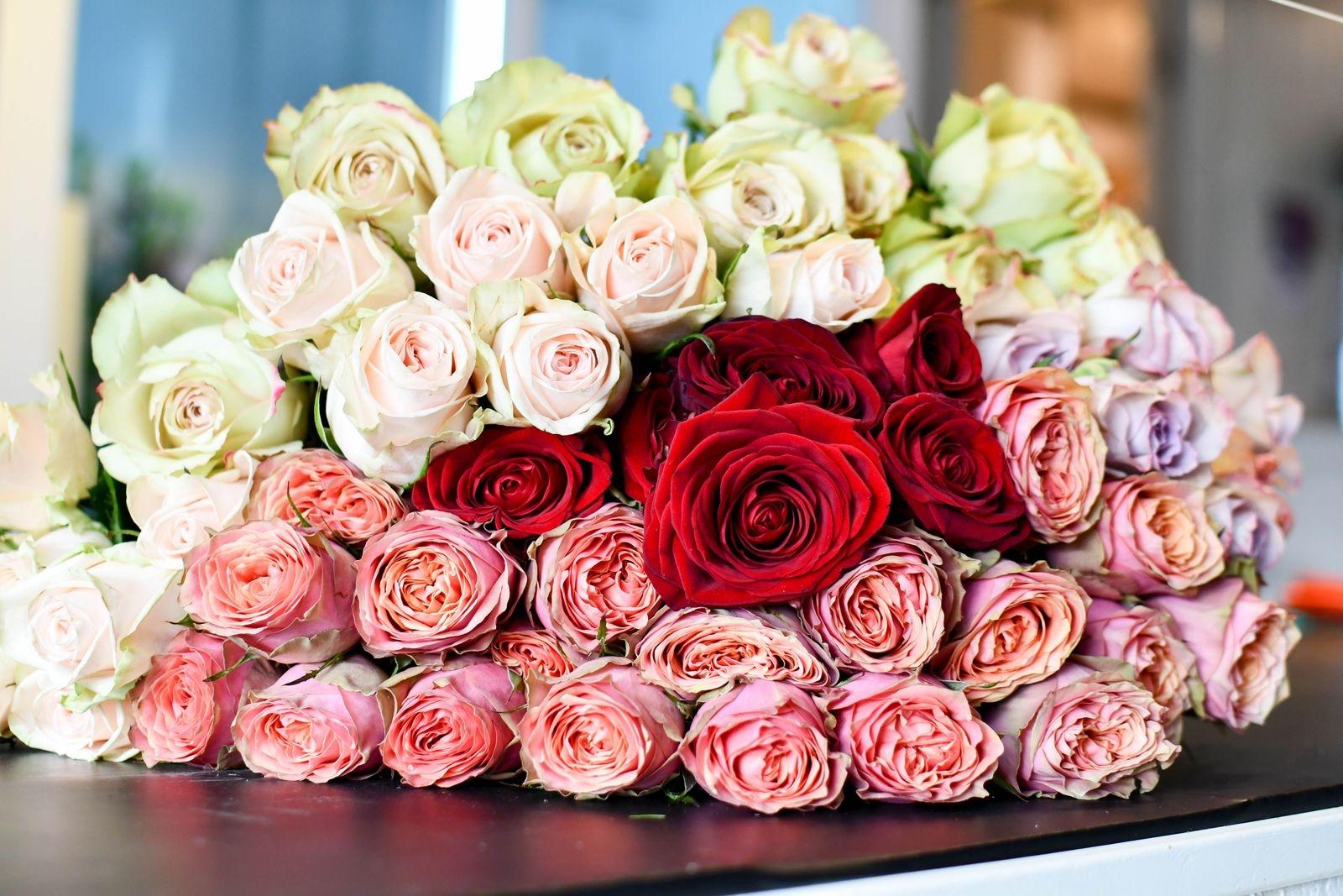 Kärlekens röda färg i sällskap av smutsiga pasteller som är populärt just nu.