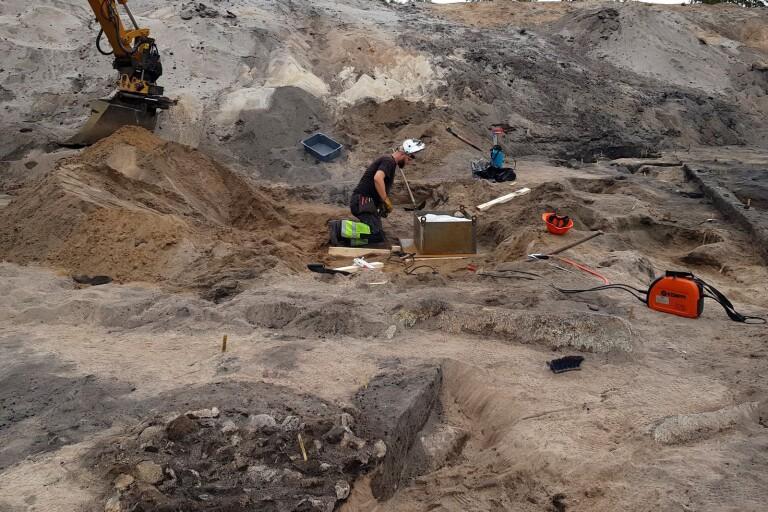 Utgrävning: 8 400 år gammal hund i Sölvesborg blev en världsnyhet