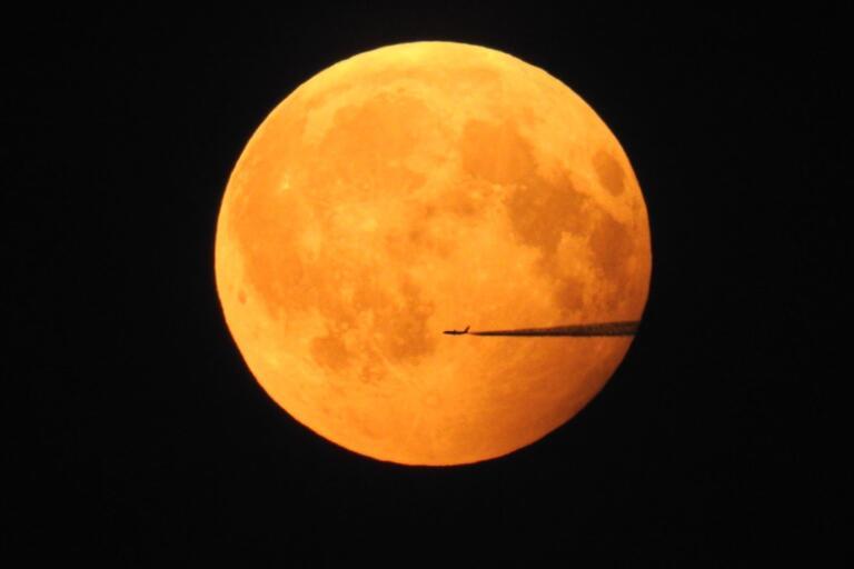 1/2. En flygtur i månljuset. Foto: Helena Samuelsson i Uråsa.
