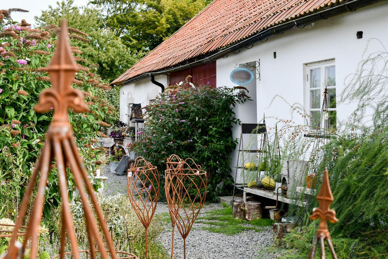 Det finns fortfarande en del växter och trädgårdsprylar i sortimentet - som växtstöden från danska Finn.