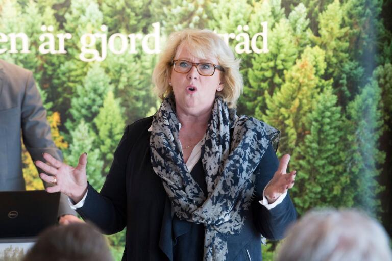 Lena Ek fick förnyat förtroende som styrelseordförande i Södra.