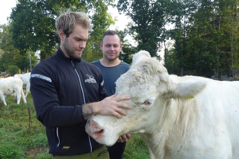 Kronobergsbönderna Erik och Patrik söker kärleken i Bonde söker fru
