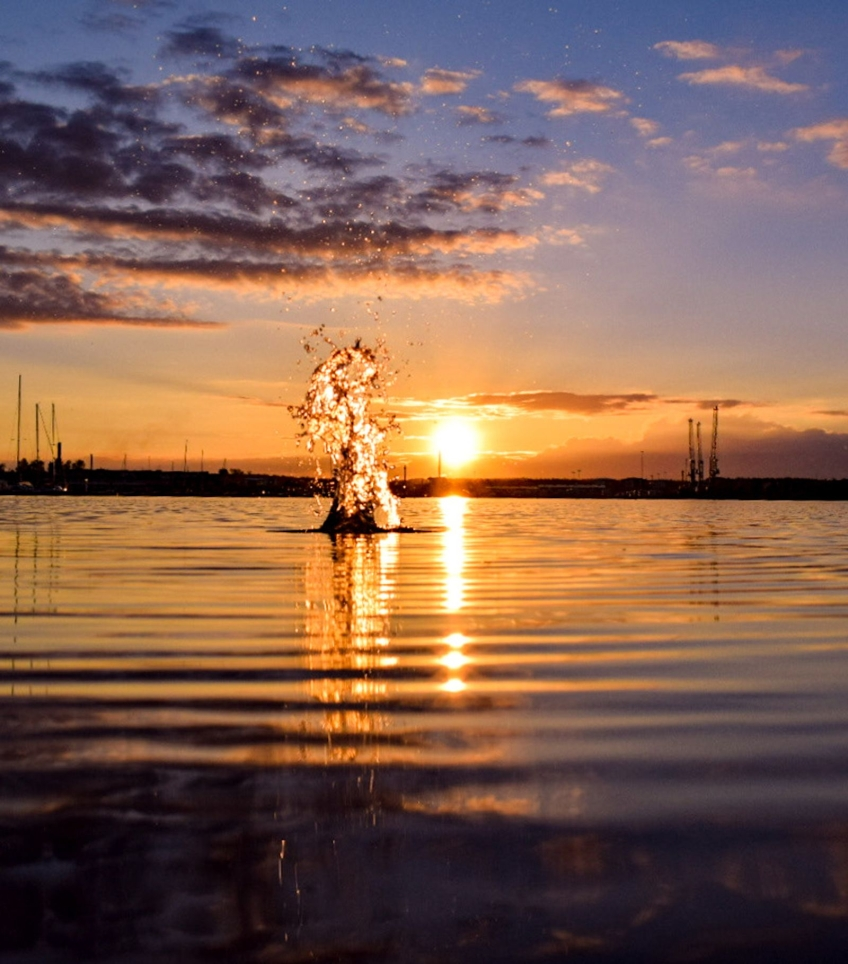 """""""God kväll"""", sade Sara Linder i Oskarshamn med den här bilden."""