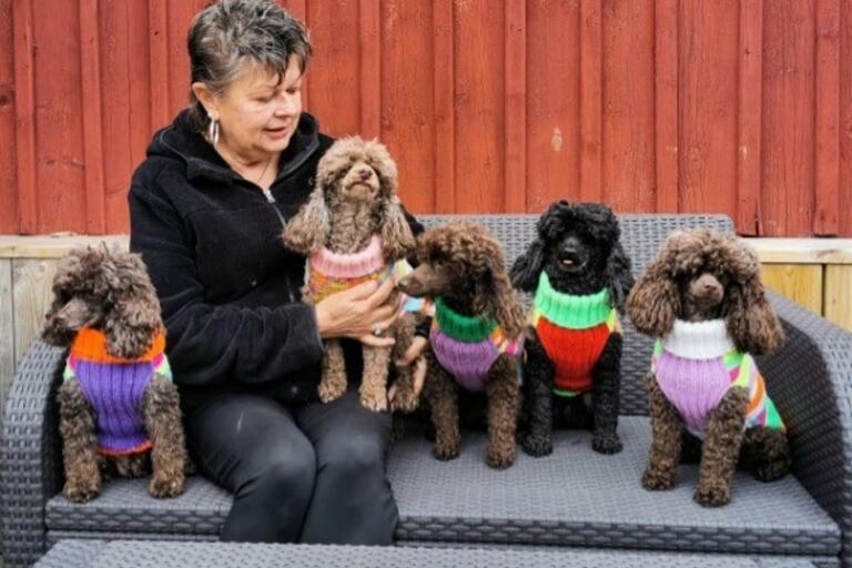 Eva Wendt tillsammans med hundarna Eva-Lotta, Bettan-Spättan, Lolli-Pop, Anna-Lisa och Kajsa-Stina.