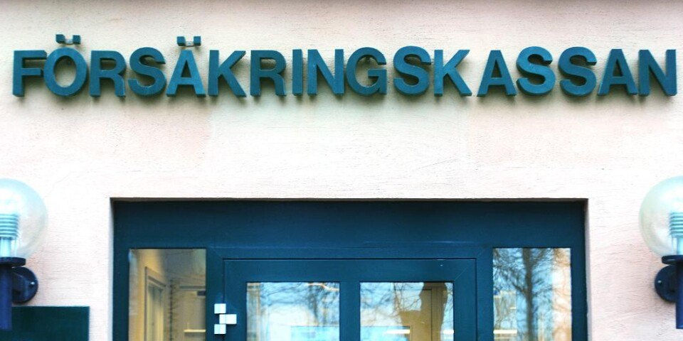 The woman had submitted incorrect information to the Swedish Social Insurance Agency (Försäkringskassan) on 28 occasions in 2017 and 2018.
