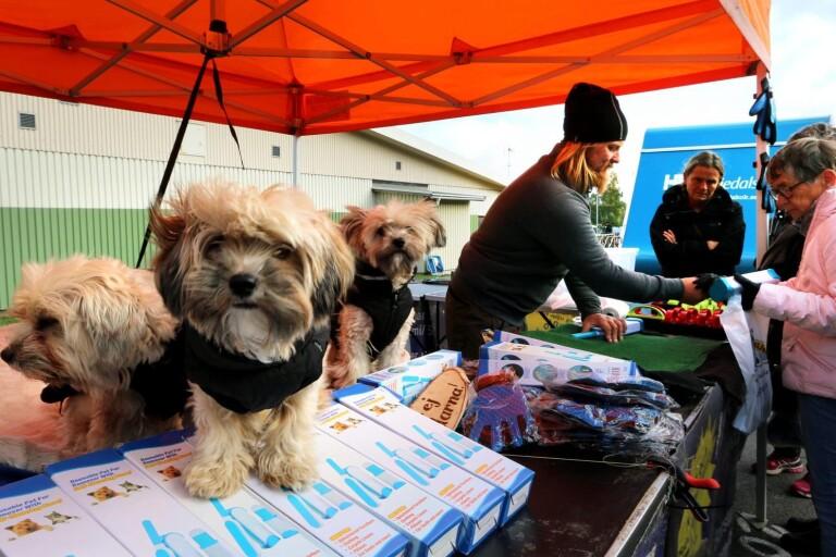 Mörlanda marknad är det största evenemanget i Herrljunga kommun och en viktig inkomstkälla för Annelunds IF. I år blir det ingen marknad.