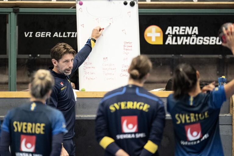 Sveriges tuffa väg till medaljsuccé i EM