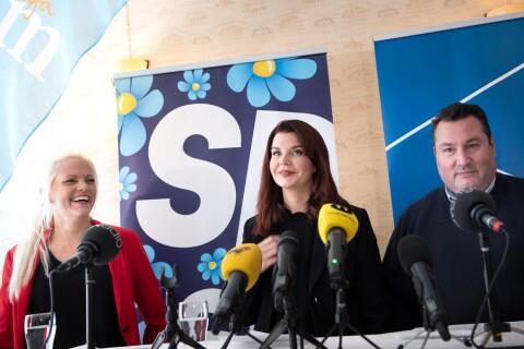TV: Erixon (SD) blir kommunstyrelsens ordförande