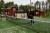"""Familjen Roos byggde sin egen padelbana – på sin egen tomt: """"Vi är lite tokiga"""""""