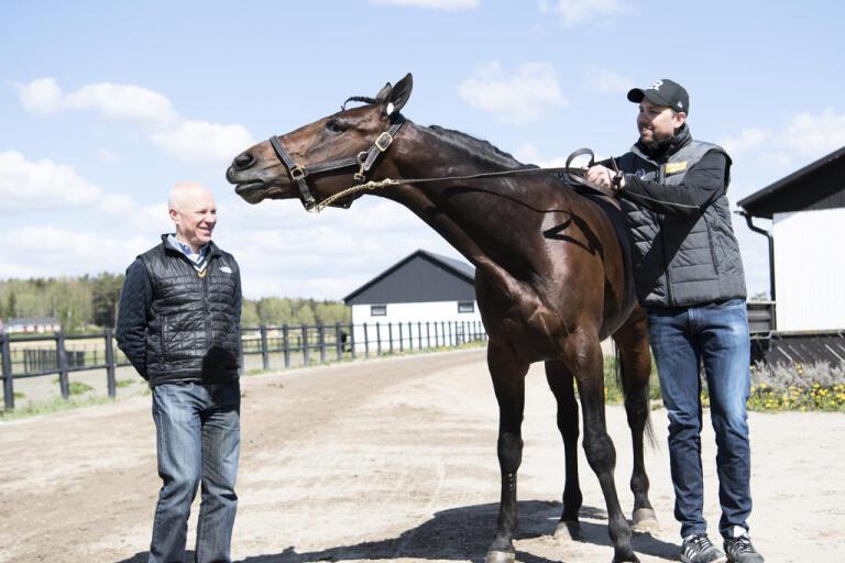 Hästen Propulsion utreds för misstänkt nervsnittning. Operationen ska ha genomförts innan flytten till Sverige 2015.