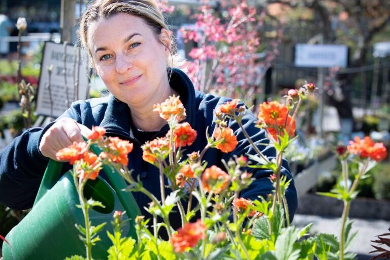 Tips för din uteplats: Blommor och växter för alla lägen