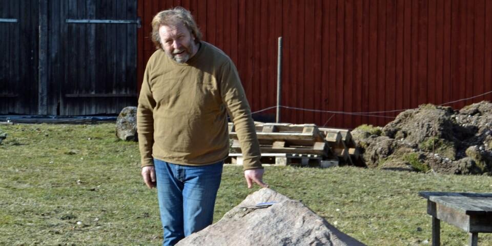Ständig stenålder. Peter Bryngelsson slåss med och mot naturen i sin steniga oas. Mycket slit har det blivit genom åren.