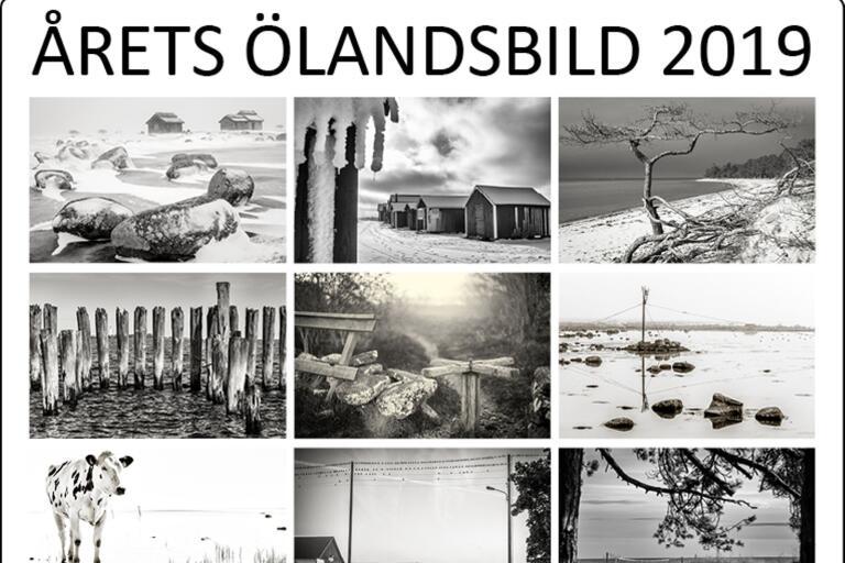 Här är Bengt Kallenbergs bilder. Vilken tycker du är bäst?
