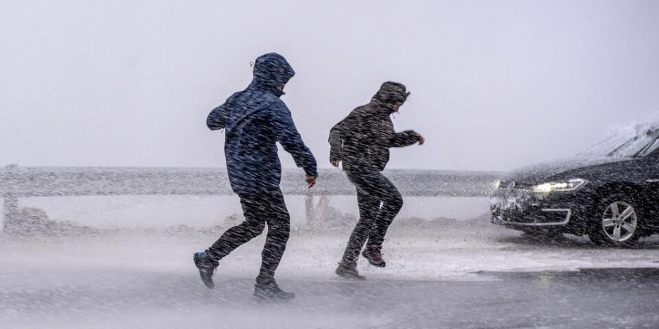 Risk att blåsa bort i fjällen – SMHI varnar för riktigt hårda vindar. Arkivbild.
