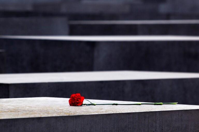 I skuggan av minnesdagen frodas de bruna idéerna
