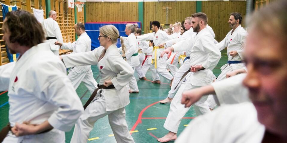 Arkivbild från karateklubbens dagläger förra våren.