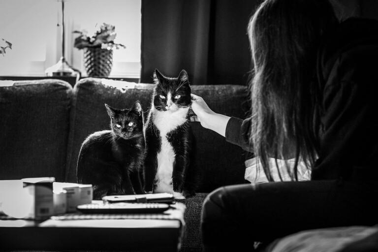 Wilma lever för sina katter och samtalen med den enda läkaren som hon har förtroende för.