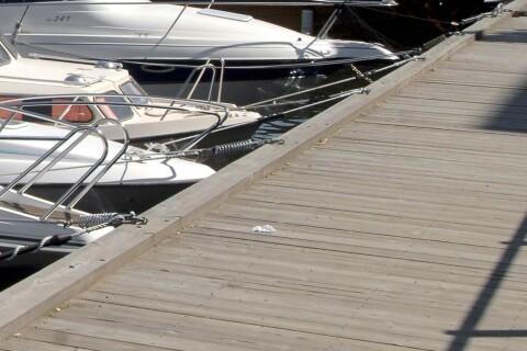 Beslagtagen båt pusselbit i människorovsutredning