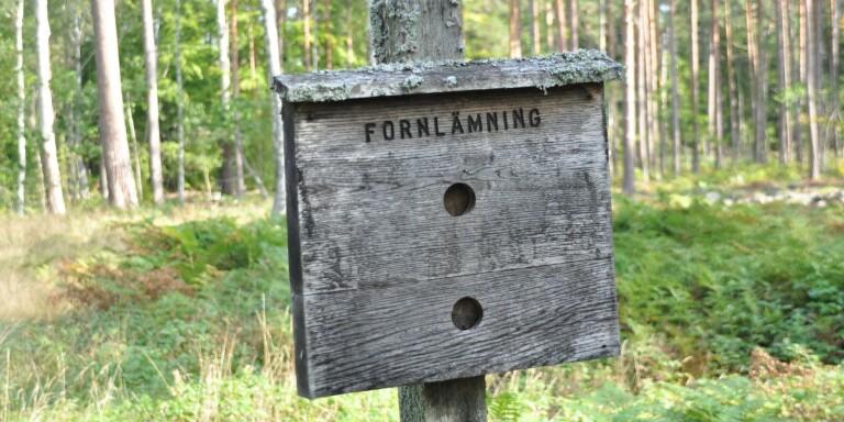 Ekoparken i Böda föreslås bli nationalpark.