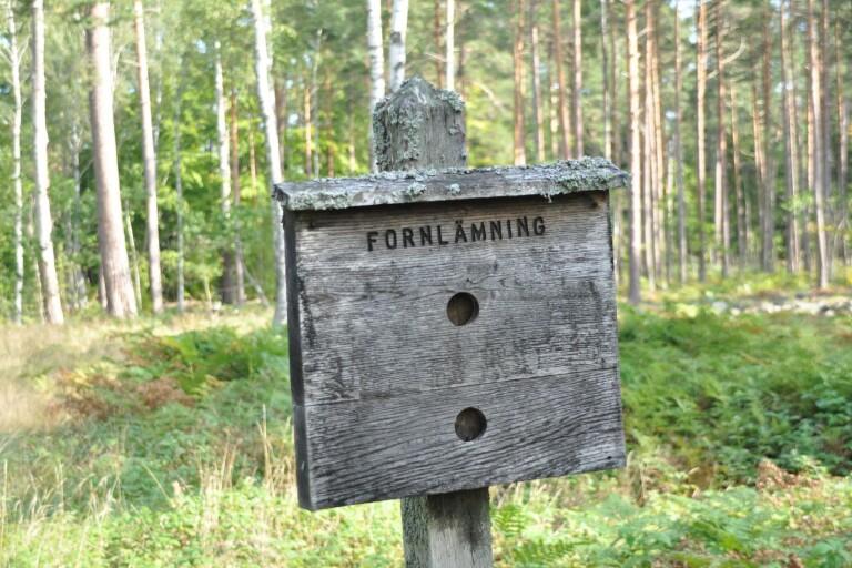 Ekopark Böda kan bli nationalpark