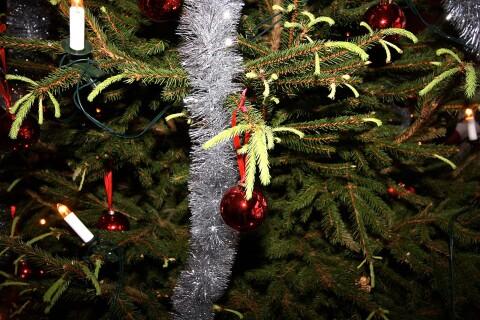 Sökes: Årets julkort