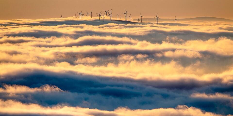 Vindkraften har sin givna plats i klimatomställningen av samhället.