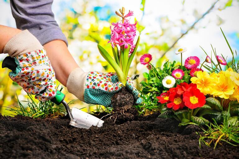 Trädgårdsarbete kan ge hjärnan ett välbehövligt andrum.